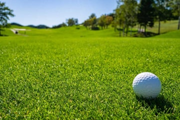 Golf course with well manicured and healthy fairway. Golf ball sitting on the green grass.